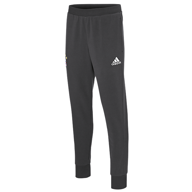 adidas Sweatpants Teamline