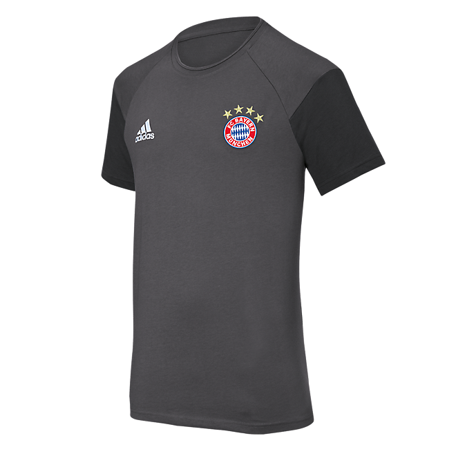 adidas T-Shirt Teamline