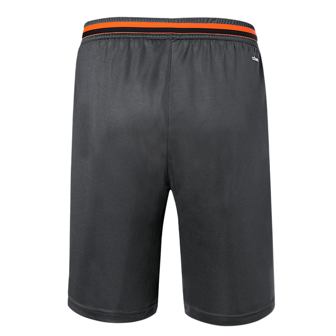 adidas Training Shorts Teamline