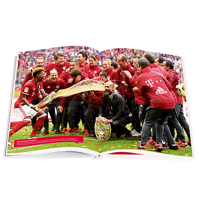 Book Die Chronik 2015/16