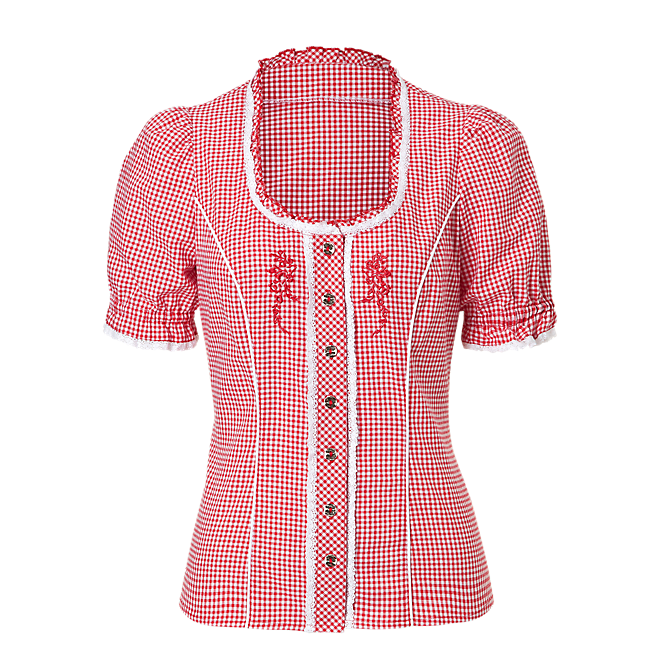 Traditional Blouse Checked Lady