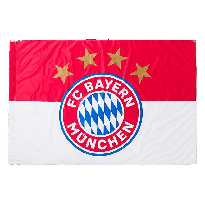 Flag Logo 150x100 cm