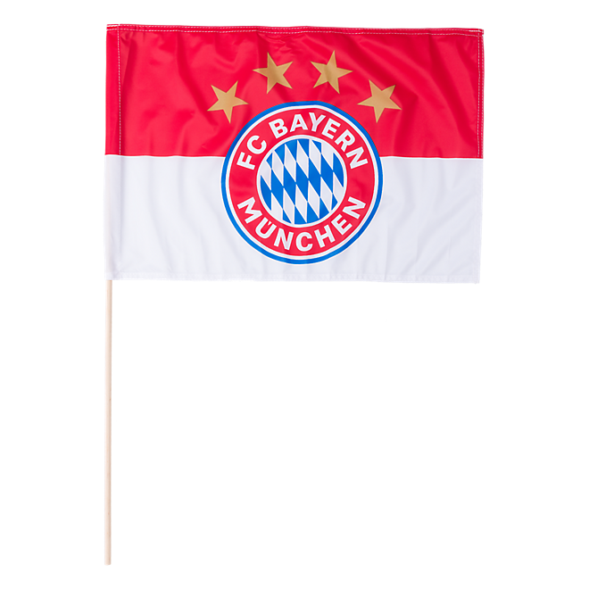 Fahne Logo 60x40 cm (mit Stock)