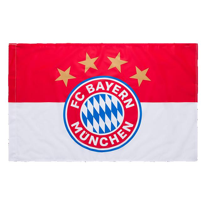Flag Logo 90x60 cm