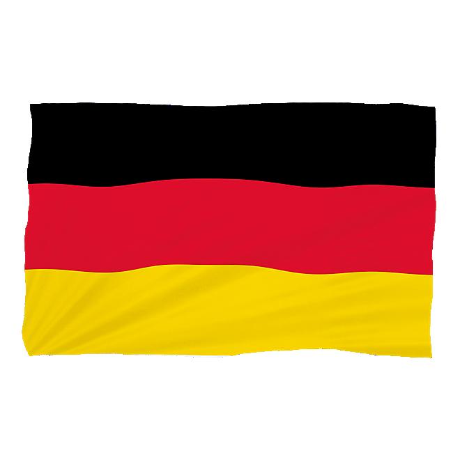 Fan-Set WM (sunglass and flag)