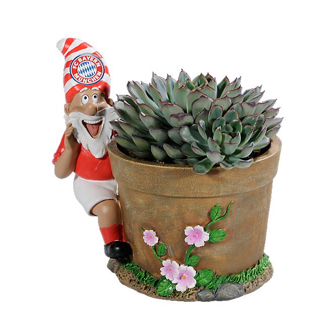 Dwarf Flowerpot