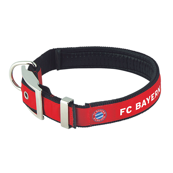 Dog Collar (short)