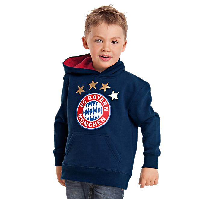 Hoodie Logo Kids
