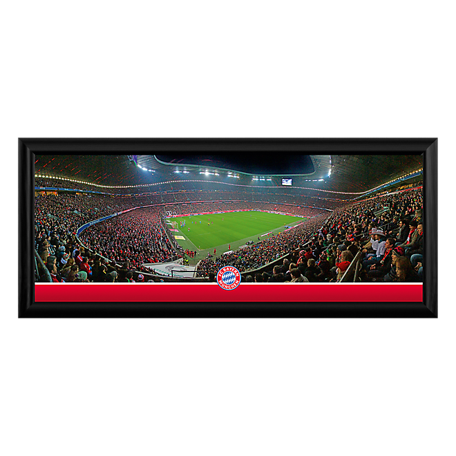 Panoramic Photo of Arena Interior, approx. 70 x 30 cm
