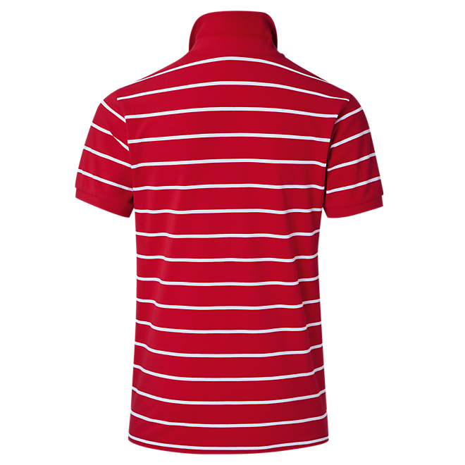 Polo Shirt Stripes