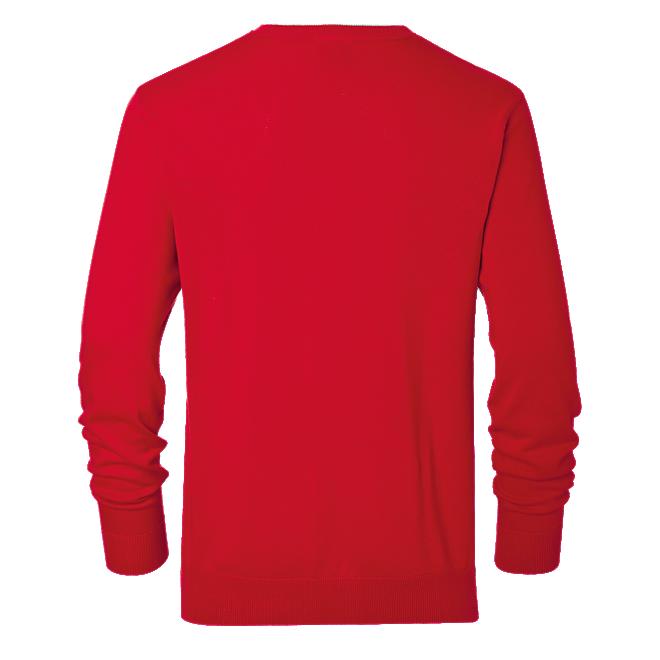 Pullover Logo