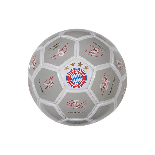 Signature Mini Ball 2017/18