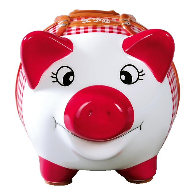 Sparschwein Tracht