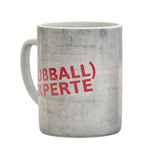 Football Expert Mug