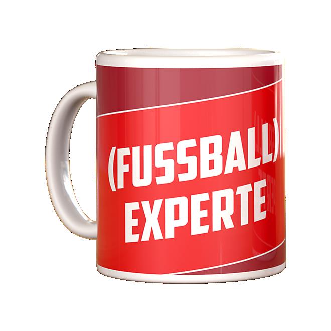 Taza (FUSSBALL) Experte [experto (en fútbol)]