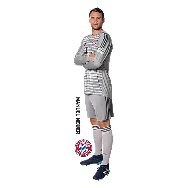 Pegatina de pared de Manuel Neuer