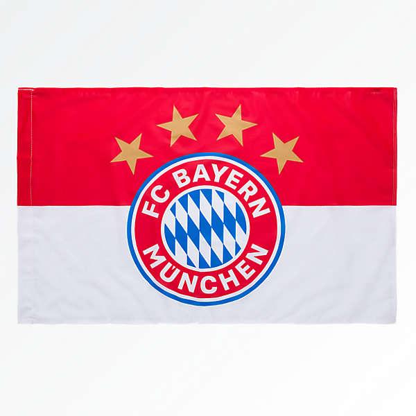 Fahne Logo 90x60 cm