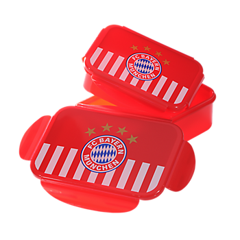 Lunchbox (Set of 2)