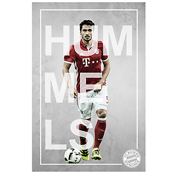 Poster Player Hummels (exclusive)