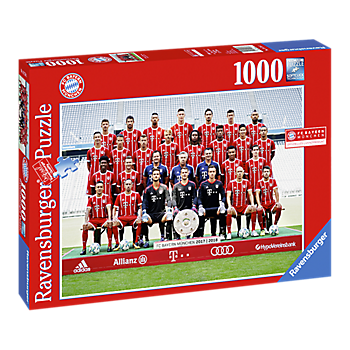 Jigsaw Puzzle Team 17/18 (1000 pieces)