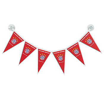 Party Pennant String