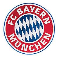 Aufnäher Logo groß