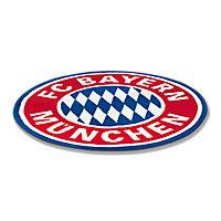 Fan-Teppich Logo