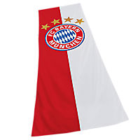 Hissflagge Logo XL