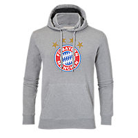 Hoodie Logo grey