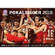 Basketball Poster Pokalsieger 2018